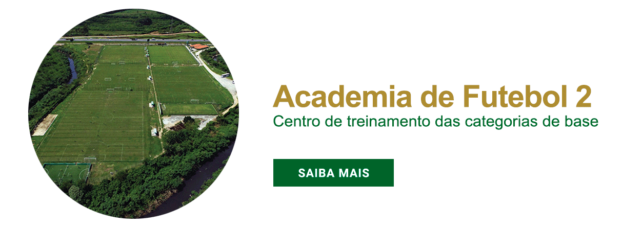 Academia 2